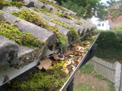 Professional Gutter Cleaning Colchester