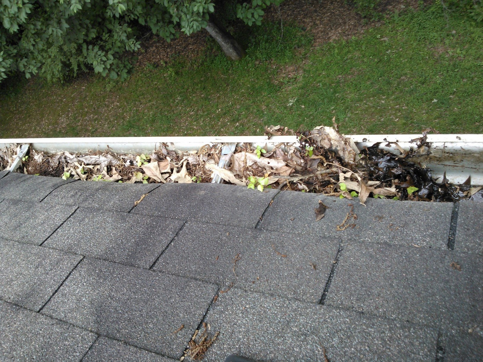 Professional Gutter Cleaning Coggeshall